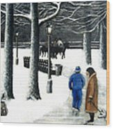 Homeless In Central Park Wood Print