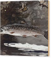 Homer: Trout, 1889 Wood Print