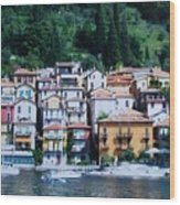 Homes Uphill In Italy Wood Print