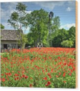 Homestead In The Poppies Wood Print