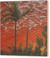 Homestead Sunset Wood Print