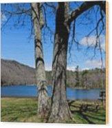 Hometown Series -sherando Lake Wood Print