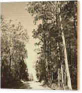 Homeward Bound Wood Print