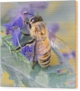 Honey bee 3 Wood Print