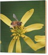 Honey Bee Mine Wood Print