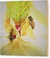 Honey Bees And Magnolia Wood Print