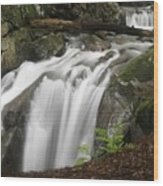 Honey Hollow Falls Wood Print