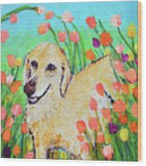 Honey In The Flower Fields Wood Print
