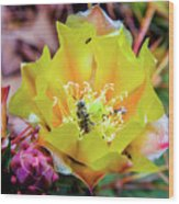 Honeybee At Work Wood Print