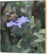 Honeybee On Blue Daze Wood Print