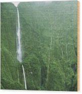 Honokohau Falls Wood Print