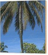 Honomaele Kahanu Gardens Hale O Piilani Ulaino Hana Maui Hawaii Wood Print