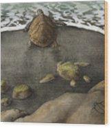 Honu Beach Wood Print