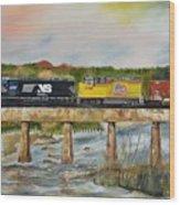 Hooch - Chattahoochee River - Columbus Ga Wood Print