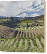 Hood River Pear Orchards On A Cloudy Day Wood Print