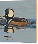 Hooded Merganser And Eel Wood Print