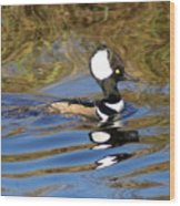 Hooded Mersanger Wood Print