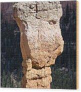 Hoodoo In Bryce Canyon Wood Print