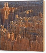 Hoodoos At Black Birch Canyon Wood Print