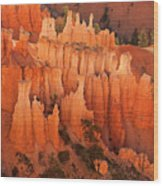 Hoodoos At Sunrise Bryce Canyon National Park Utah Wood Print