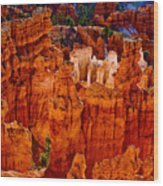Hoodoos Bryce Canyon Wood Print