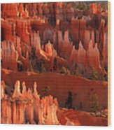 Hoodoos Of Sunset Point At Sunrise  In Bryce Canyon Wood Print