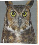 Hoot-owl - I'm Looking At You Wood Print