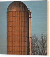 Hoover Pumps Atop Silo Wood Print