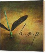 Hope Ebony Jewel Wing Damselfly On Golden Sunlight Dragonfly Wood Print
