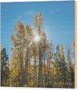 Hope For Fall  Wood Print
