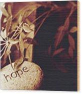 Hope Stone 1 Wood Print
