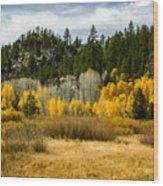 Hope Valley Wood Print