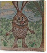 Hopper Doodle Bolak Wood Print