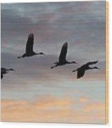 Horicon Marsh Cranes #1 Wood Print