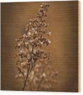 Horicon Marsh - Wildflower Golden Glow Wood Print