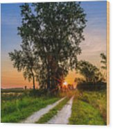 Horicon Trails Wood Print