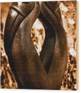 Hornbills Wood Print