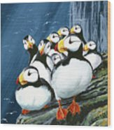 Horned Puffins At Rest Wood Print