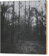 Horror In The Woods Wood Print