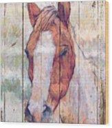 Horse 2 Wood Print