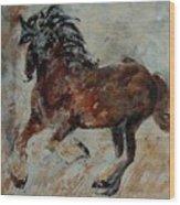Horse 561 Wood Print