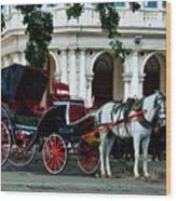 Horse And Buggy In Havana Wood Print