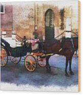 Horse And Carriage Wood Print