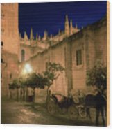 Horse And Carriage Seville Spain Wood Print