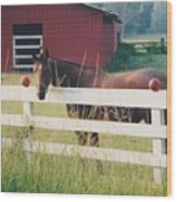Horse And The Barn Wood Print
