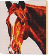 Horse Art Horse Portrait Maduro Red With Yellow Highlights Wood Print