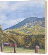 Horse Barn At Cades Cove Wood Print