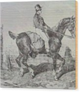 Horse Carriage Wood Print