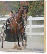 Horse Carriage Racing In Delmarva Wood Print