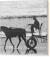 Horse Cart Wood Print